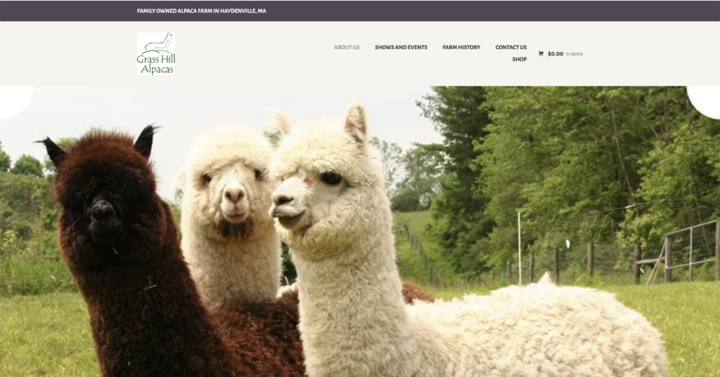 grass hill alpaca homepage